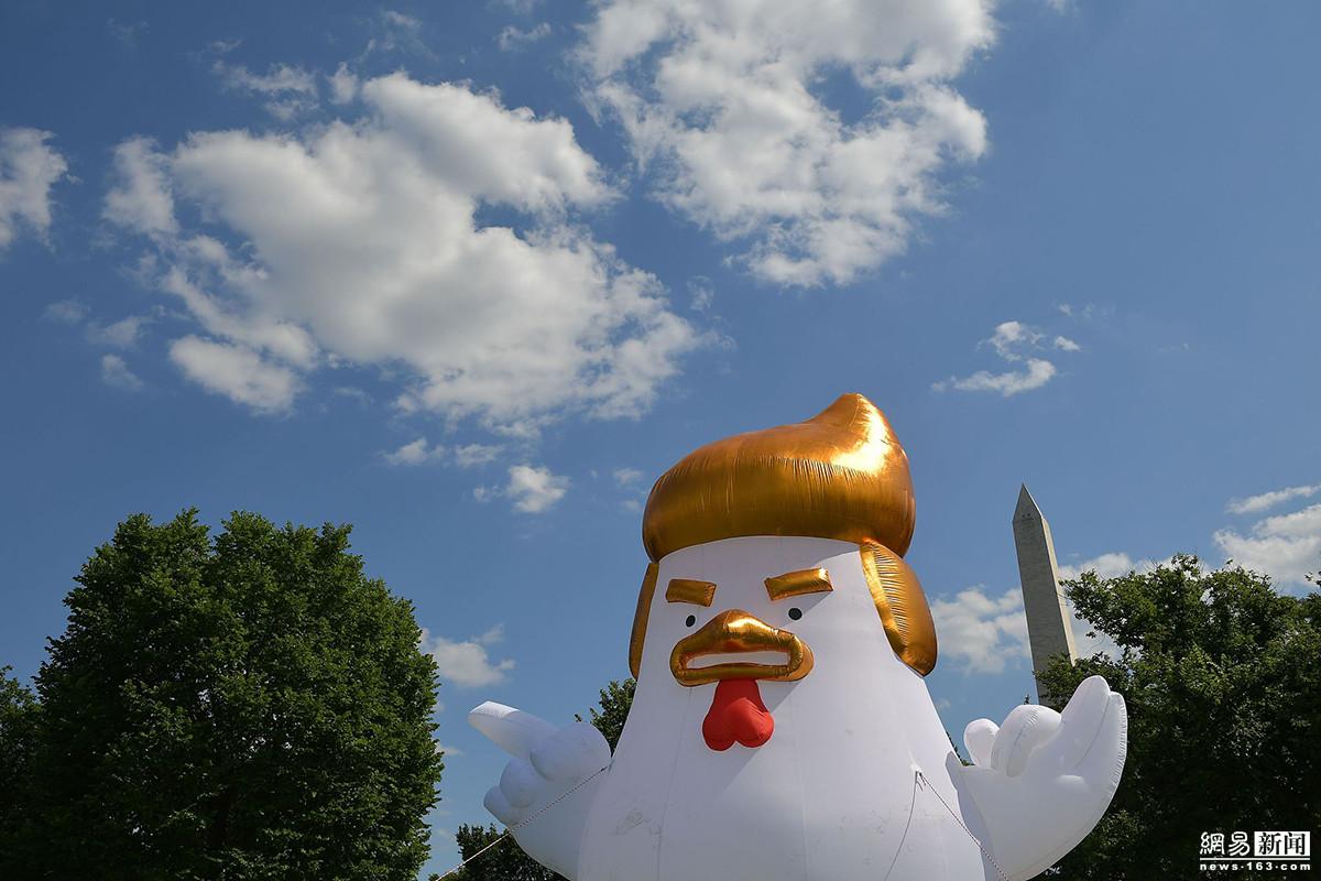 美国白宫现唐老鸡 抗议特朗普软弱 - 周公乐 - xinhua8848 的博客