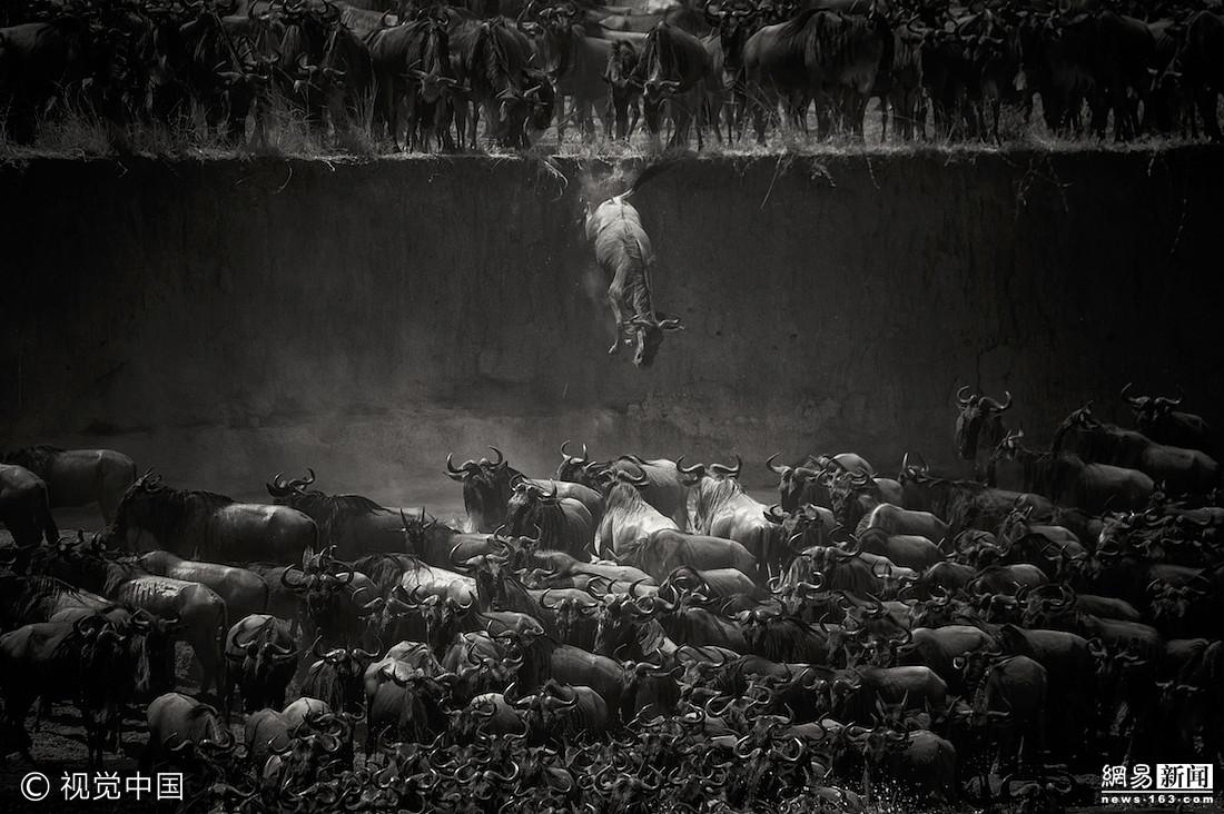 黑白魅力 全球黑白摄影大赛获奖作品图片