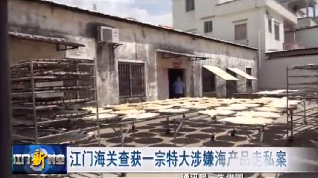 广东破获8亿走私案 查扣海产品50吨 - 周公乐 - xinhua8848 的博客