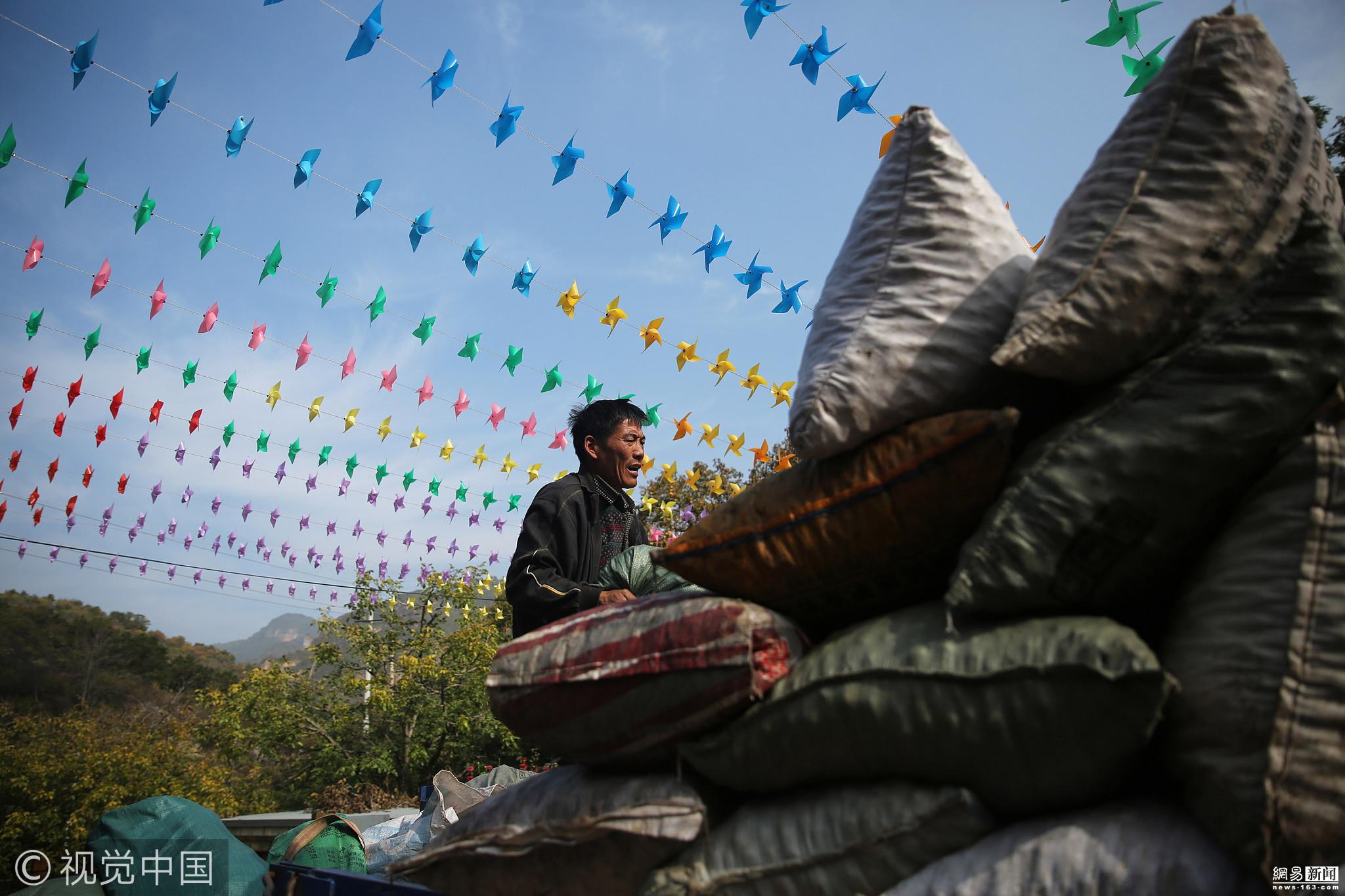 夫妻一天跨3省市收山楂 日收2万斤致富 - 周公乐 - xinhua8848 的博客