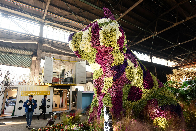 巨型都市单身狗现身老厂房 用十万枝花做成 - 周公乐 - xinhua8848 的博客