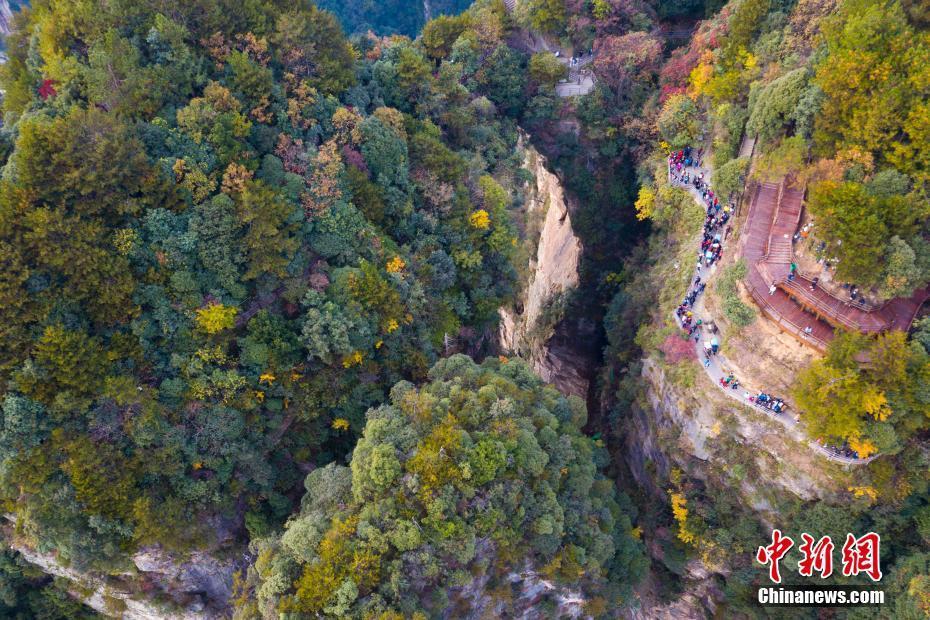 航拍张家界武陵源美景 峰林地貌引人入胜 - 周公乐 - xinhua8848 的博客