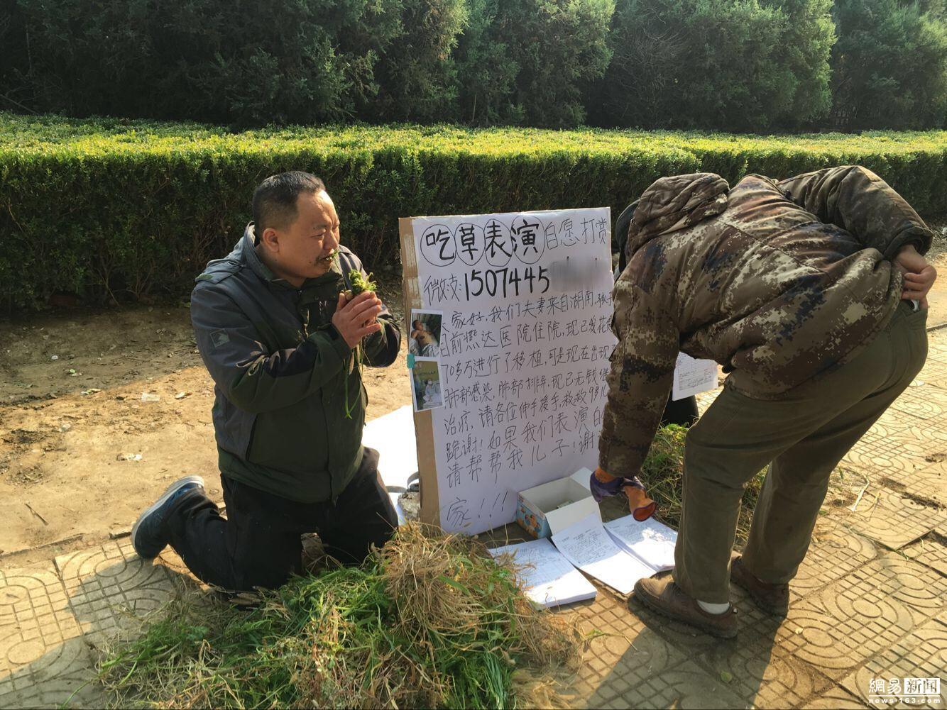 为救9岁儿子 河北夫妻街头表演吃草 - 周公乐 - xinhua8848 的博客