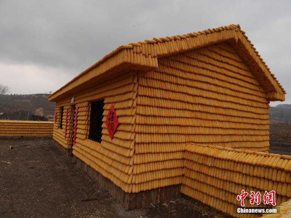 """吉林农民用2万个玉米造出""""黄金屋院"""""""
