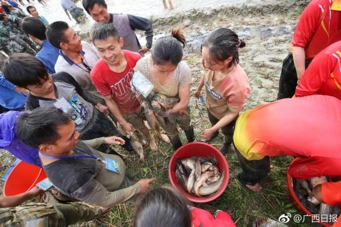 广西600人混水摸鱼 3000多条鱼被疯抢 - 【医药前沿】的网易博客