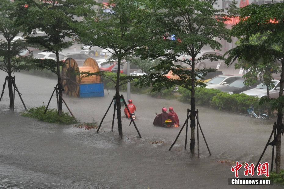 """海口遭暴雨袭击 城市内涝成""""泽国"""" - 周公乐 - xinhua8848 的博客"""