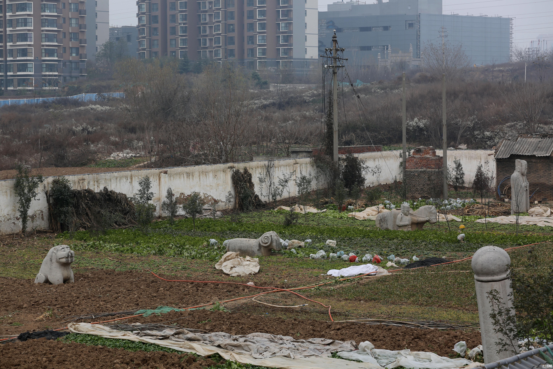 全国重点文物成菜园子 西安秦王墓无人看管【历史古迹】 - 周公乐 - xinhua8848 的博客