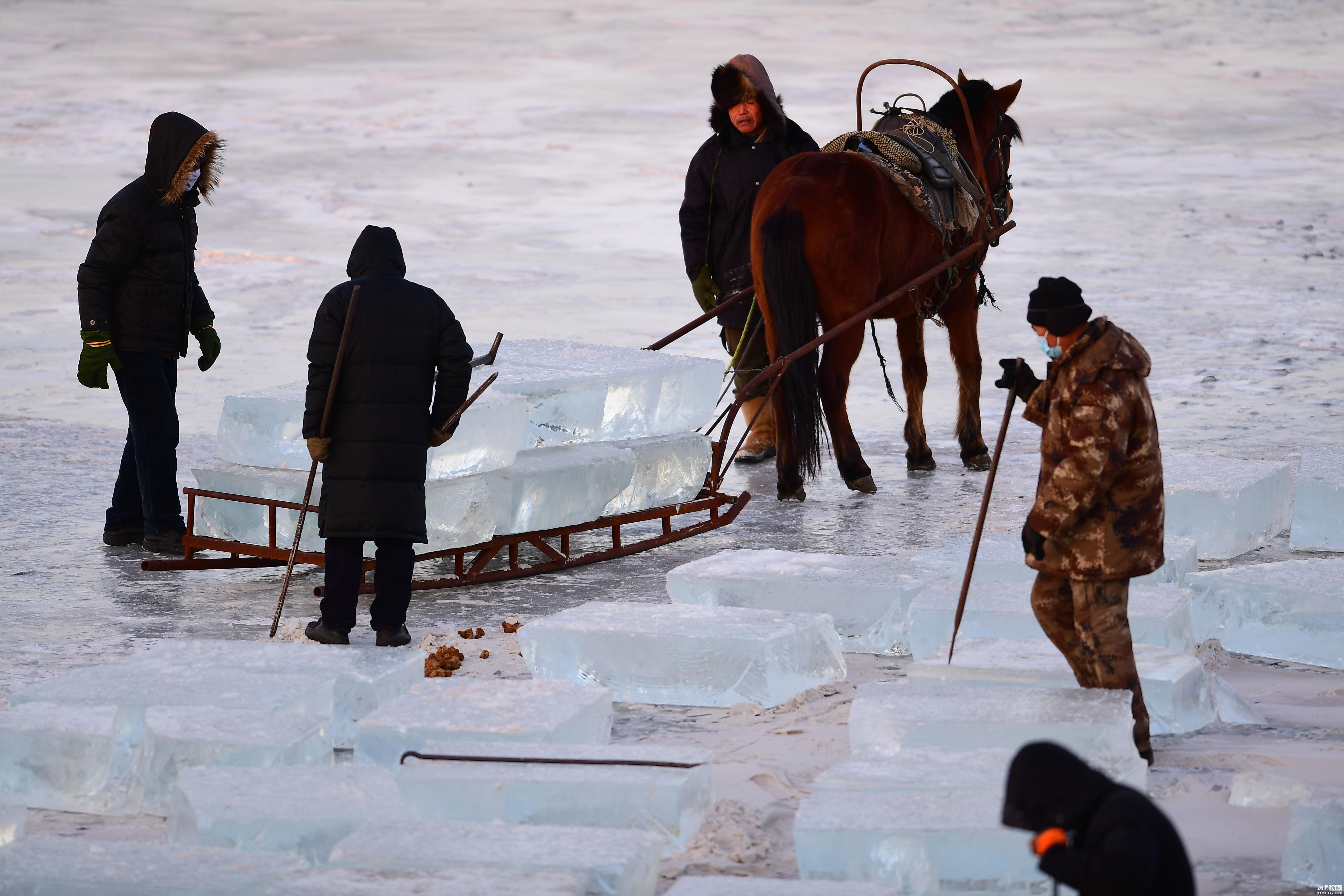 零下20度!图揭采冰人湖面采冰现场 - 周公乐 - xinhua8848 的博客