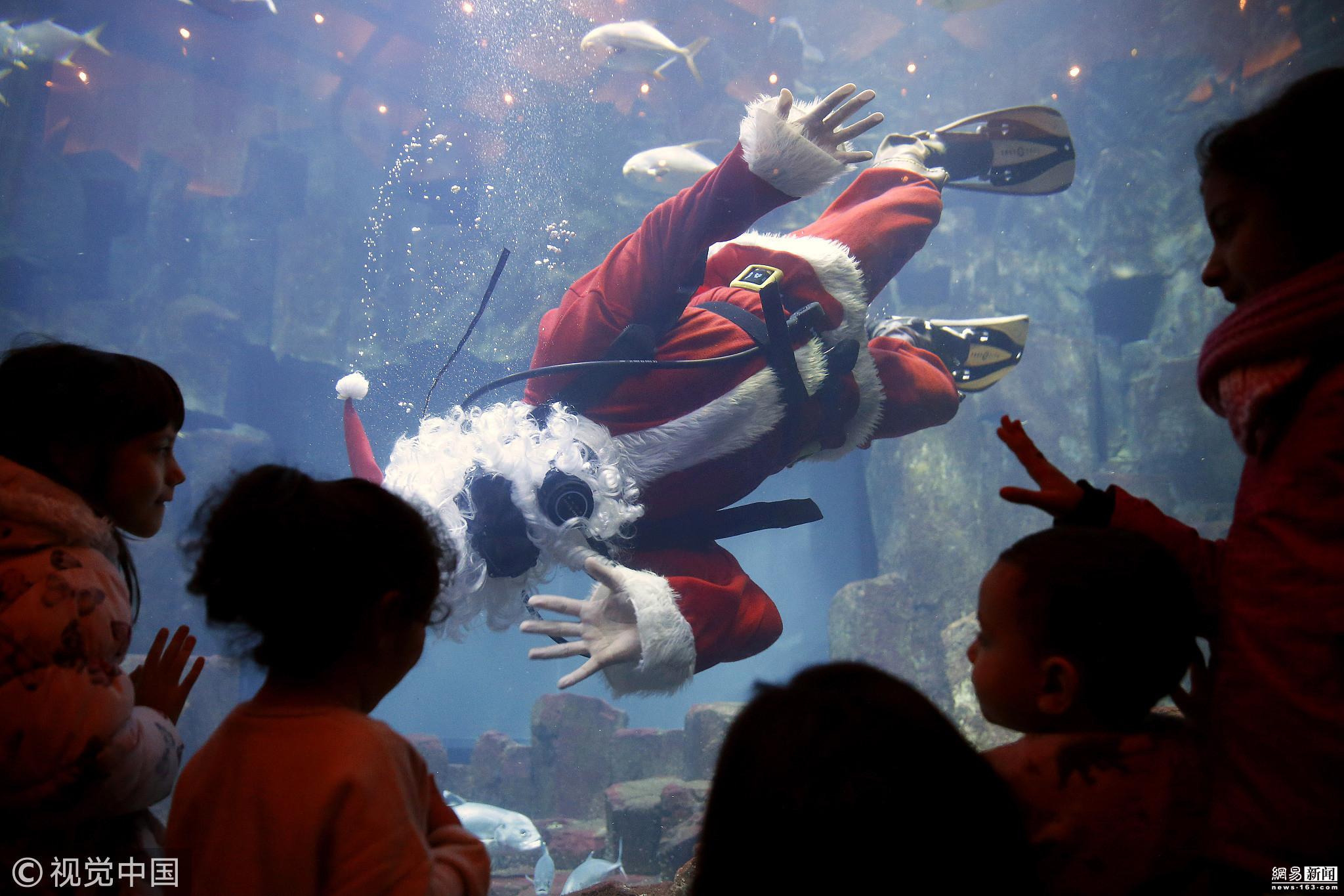 法国巴黎水族馆中潜水员扮圣诞老人与鱼共游