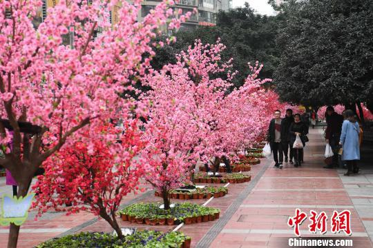 重庆闹市大片桃花盛开 众人争相拍照 - 周公乐 - xinhua8848 的博客