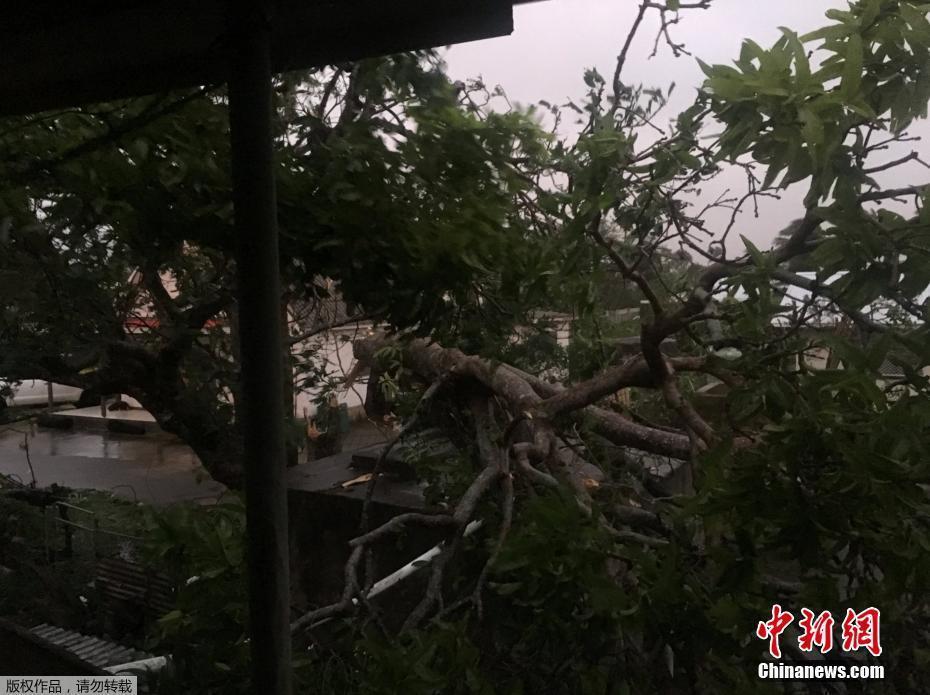 """超强飓风""""基塔""""袭击太平洋岛国汤加! - 周公乐 - xinhua8848 的博客"""