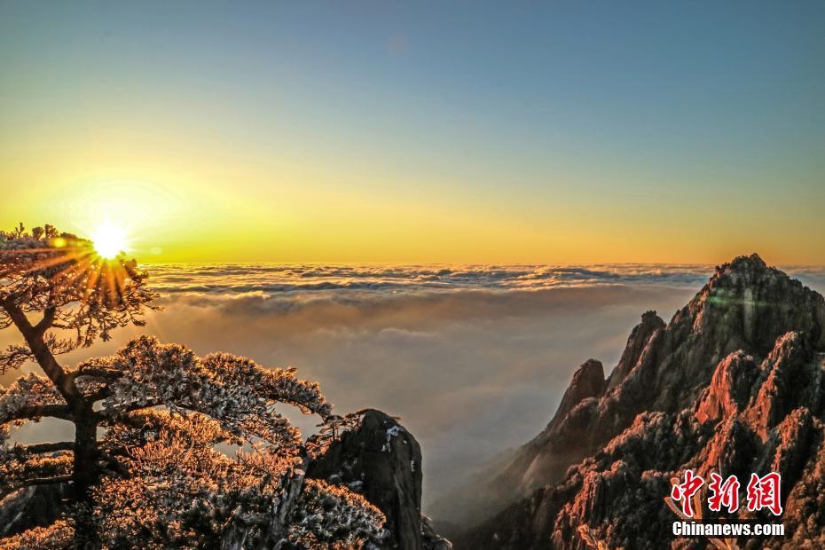 黄山云海、日出、雾凇多景齐现 壮美如画!!! - 周公乐 - xinhua8848 的博客