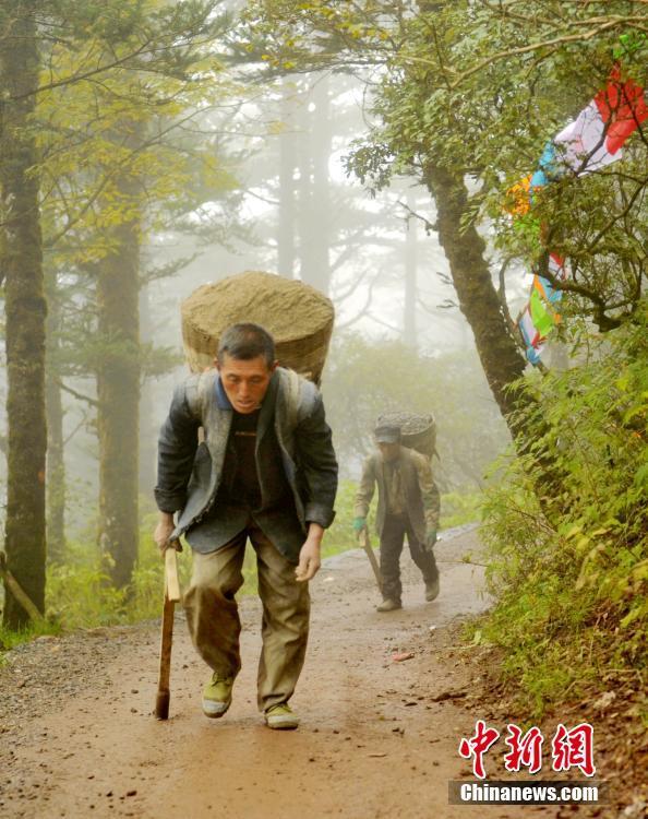 峨眉背山工:背200斤建材上山 每天往返10趟! - 周公乐 - xinhua8848 的博客