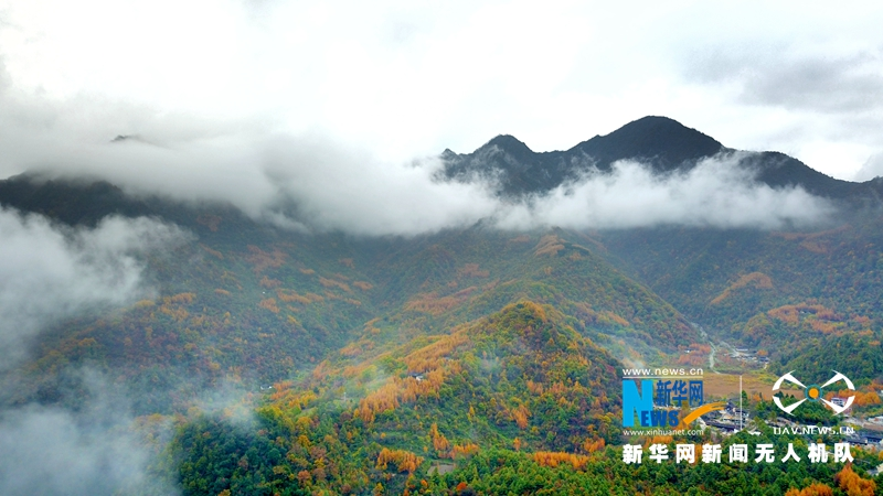 在深秋里看山 - 长天秋水2 - 长天秋水 的博客