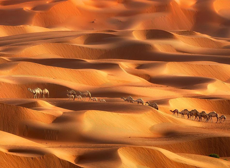 迪拜沙漠震撼美景 沙丘起伏若黄色海洋
