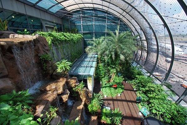 盘点全球最有创意的机场 机场还能这样玩?