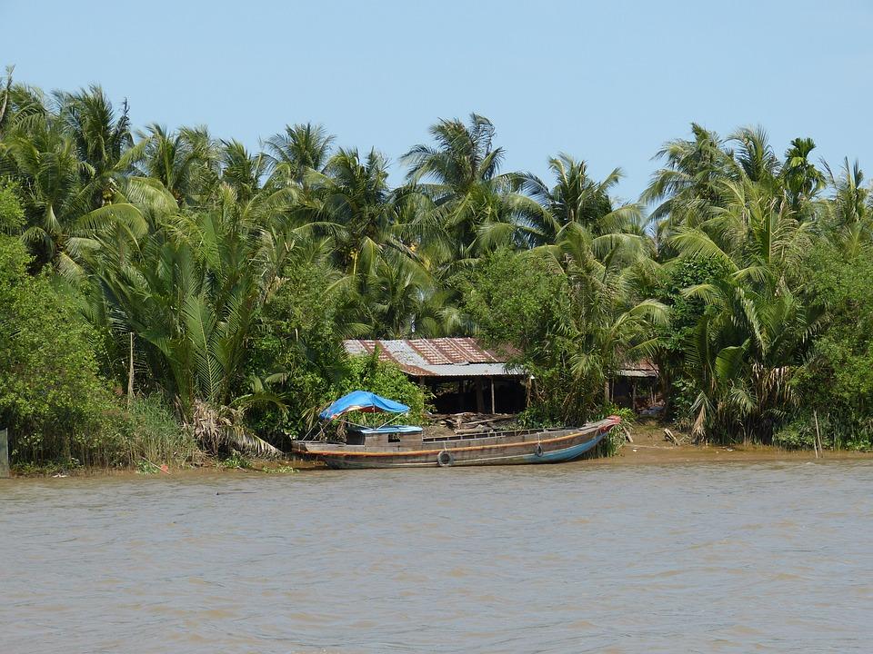 去湄公河流域旅游 一不小心就会发现新物种