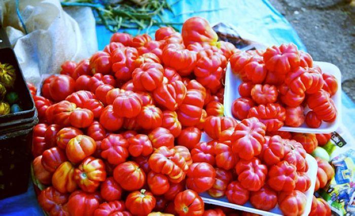 实拍墨西哥农贸市场千奇百怪的美食