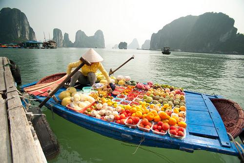 越南人是东亚人吗?越南网民这样说