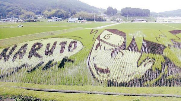 日本动漫稻田