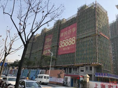 上海大发融悦四季项目现场图片