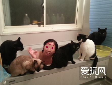 为何猫喜欢看人洗澡:14
