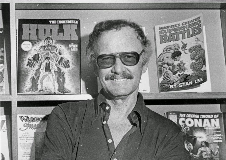 success and failure of stan lee (8)