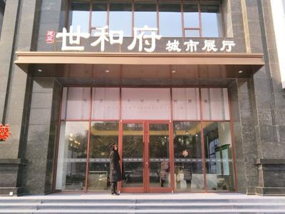 濮阳建业·世和府项目现场图片